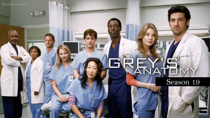 Grey's Anatomy Season 19 Confirmed Announcement |  Release date, plotting and updates